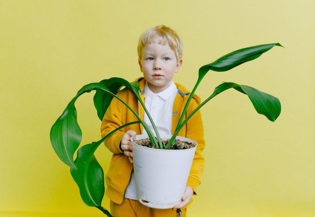 العادات البيئة للطفال