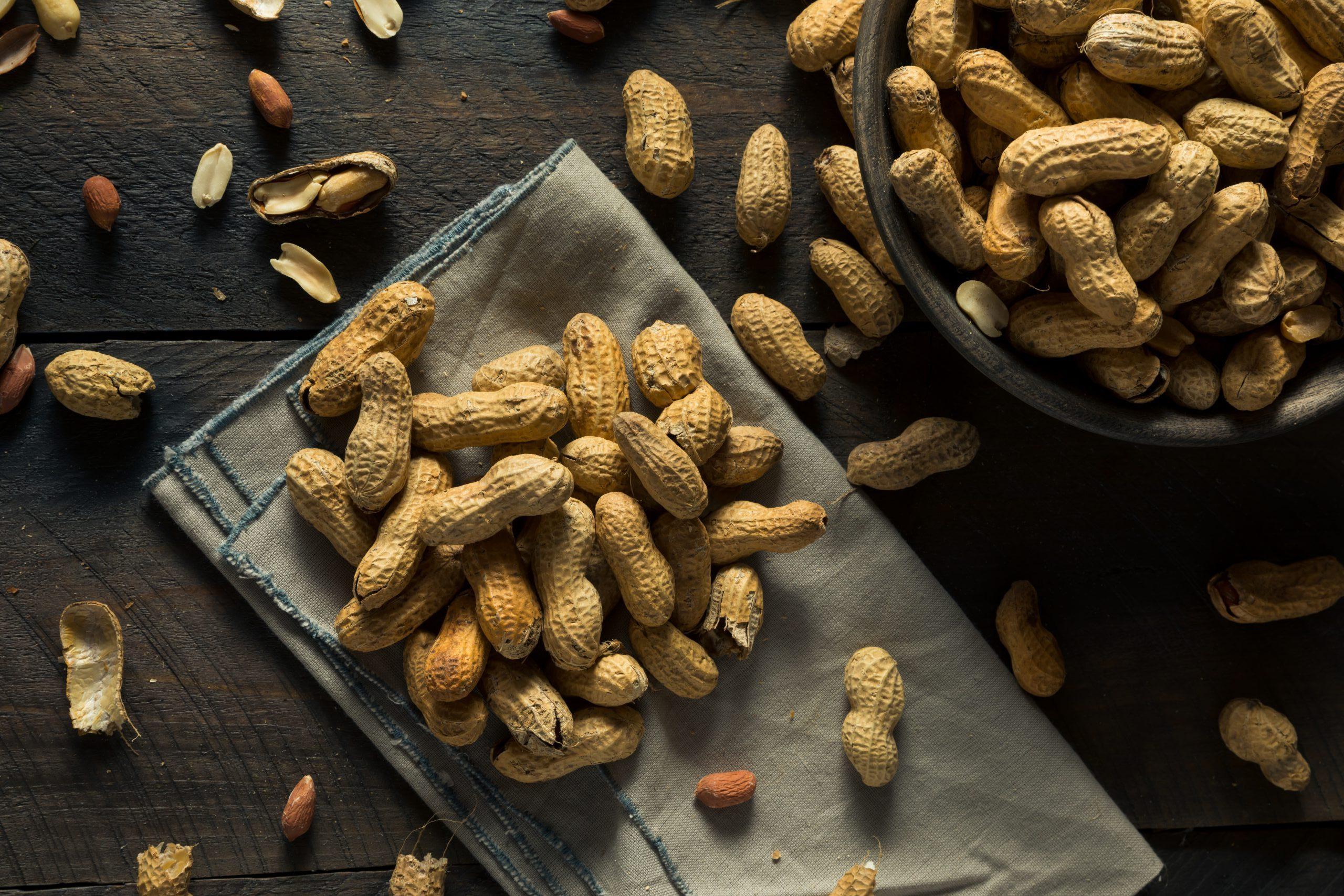 Dry Salted Roasted Shelled Peanuts